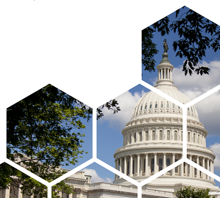 DC-hexagons-government